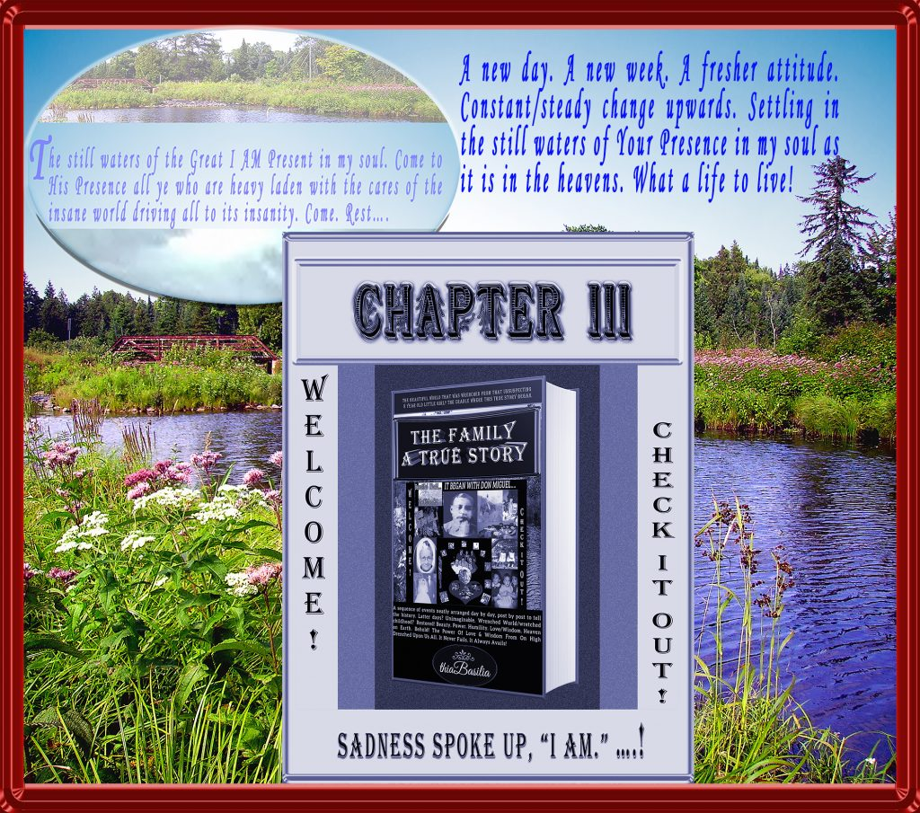 https://www.thia-basilia.com/wp-content/uploads/2018/02/A-Graphic_4_CHAPTER-3_of_The_Family.jpg